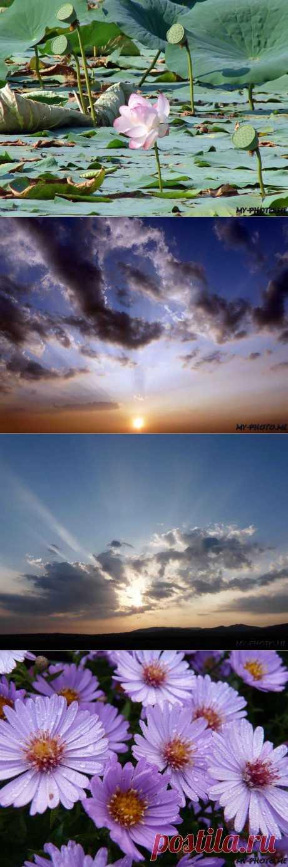 Что такое фототерапия. Фототерапия и Терапевтическая фотография. Излучатель положительной энергии