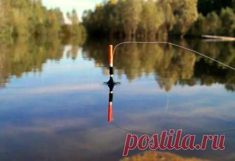 Tонкости осенней ловли на поплавочную снасть | All-Fishing.ru | Яндекс Дзен