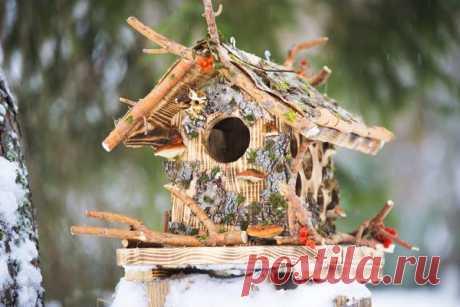 Идеи эко-кормушек от подмосковной мастерицы. Как накормить птиц и одновременно украсить сад