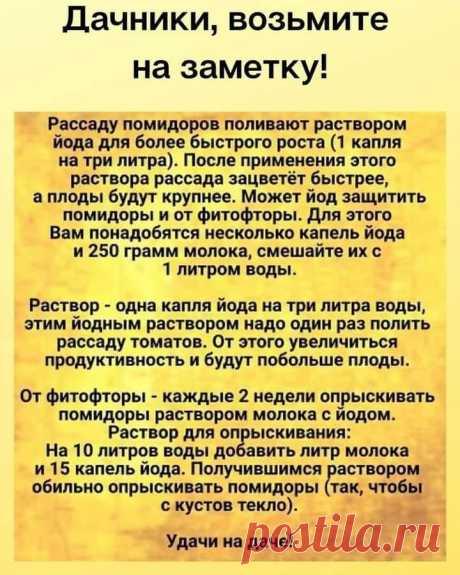 (20+) Facebook