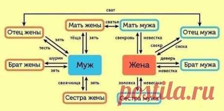 Степени родства у русских.