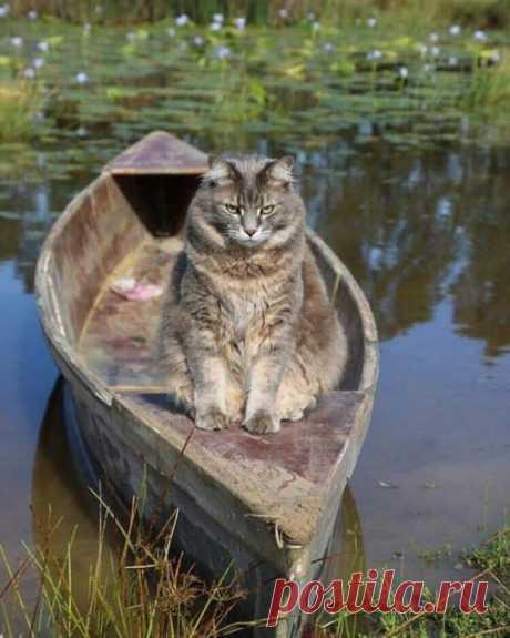 Представитель рыбнадзора