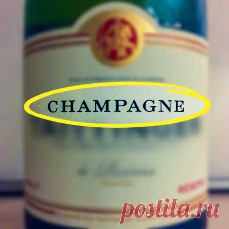 Как правильно выбрать шампанское к праздничному столу
