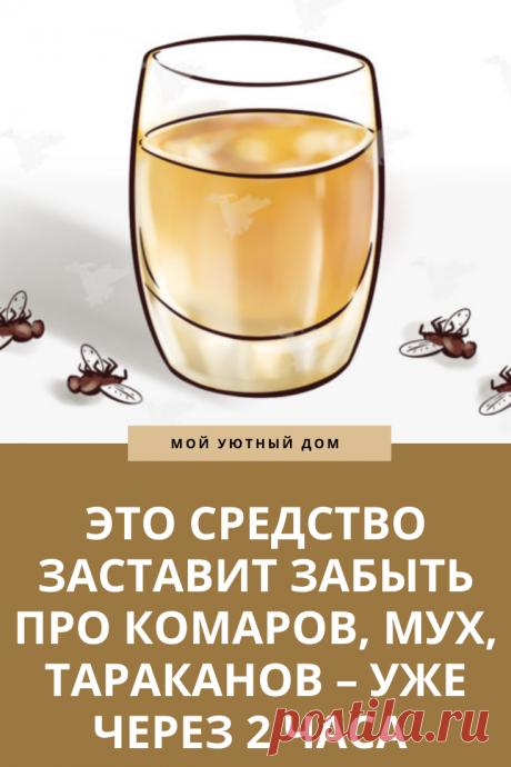 Способ как избавиться от мух и тараканов легко и быстро