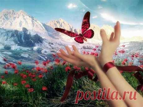 Натюрморт Бабочка в руке