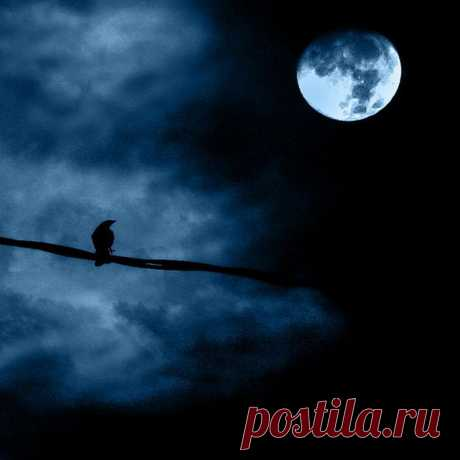 Красивейшие фото Луны - Лучшие фотографии со всего света
