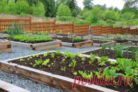 Деревянные палеты и креативные способы их использования в интерьере загородного дома — Дом и Сад