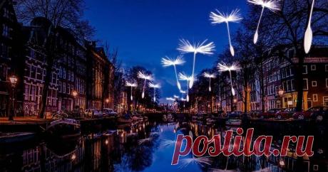 Ярче любых слов: открыт ежегодный фестиваль света в Амстердаме – Ярмарка Мастеров