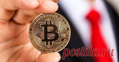 Бесплатный биткоин для начинающих | Crypto Bro | Яндекс Дзен