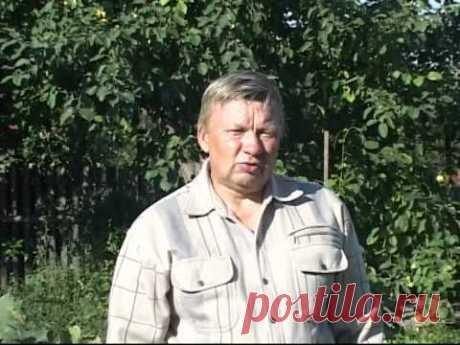 Технология выращивания винограда - Николай Сергеев 3