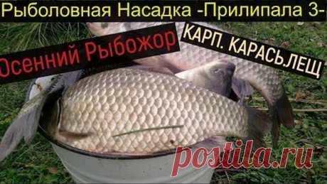 Супер Рыболовная Насадка--ПРИЛИПАЛА 3-Осенний Рыбожор--.Карась.Карп.Линь.Лещ.