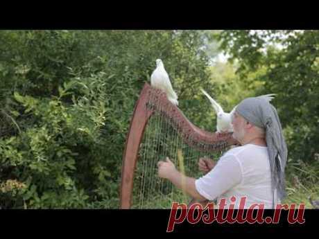 "Alizbar   ""Под белыми крыльями"" / Under white wings - YouTube"