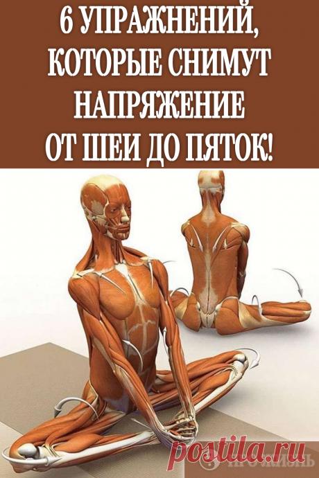 #упражнения #для #спины #снять #напряжение - Favland.org