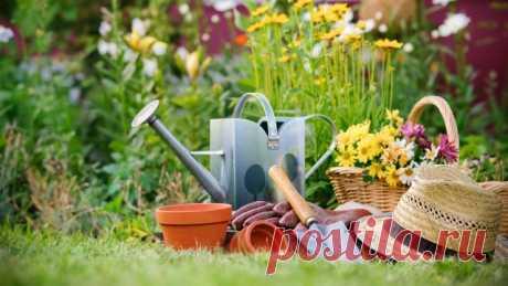 Лунный посевной календарь садовода-огородника на апрель 2016 года | Imenno.ru