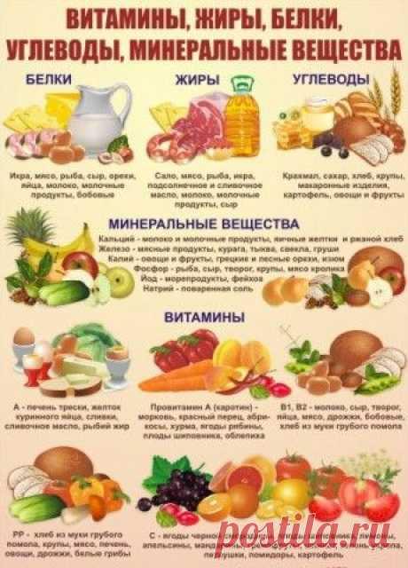 Название: Полезные таблицы. Вся таблица Менделеева. - запись пользователя Koralek  (Катюша) в сообществе Болталка в катег… | Здоровое питание, Чистое питание,  Полезное питание Найдено в Google. Источник: pinterest.ru