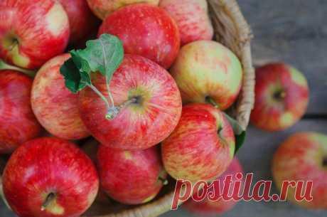 Диетолог Александра Давыдова рассказала, кому нельзя есть яблоки и как их готовить, если очень хочется полакомиться фруктом Добрый день, читатели блога! Сегодня поговорим о вкусных, сладких яблоках. Кому их можно, а кому нельзя. Пишите в комментариях, вы любите яблоки? Будем ориентироваться на мнение врача-диетолога, а не на свое собственное. Важно! Данная статья носит исключительно... Читай дальше на сайте. Жми подробнее ➡