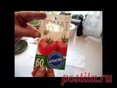 Посев томатов на рассаду/Быстрое проращивание семян без земли/Проверка всхожести семян/сорта томатов