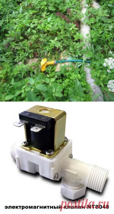 Автоматический полив огорода