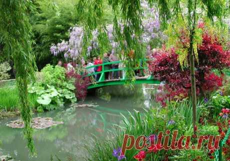 Сад мечты обойдётся в копеечку-планирую покупки на весну.Делитесь названиями растений, которые стоит посадить на участке   Домик на берегу поля   Яндекс Дзен