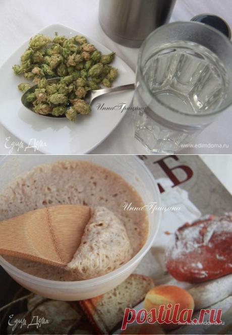 Домашние дрожжи на хмеле рецепт 👌 с фото пошаговый   Едим Дома кулинарные рецепты от Юлии Высоцкой