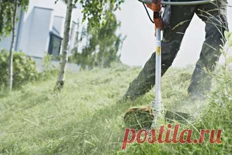 Как правильно пользоваться 🌵 триммером для покоса высокой травы и главные хитрости Правила использования триммера 🌿. Как подготовить прибор к работе 🌳? Правила обработки травы триммером. Высокая трава. Ровный рельеф. Подрезка. Выкос склонов. Обход кустарников и больших деревьев. Выбор триммера.