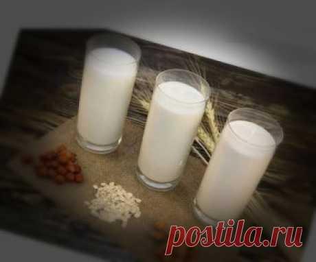 Растительное молоко. Полезные свойства | Полезные советы | Яндекс Дзен