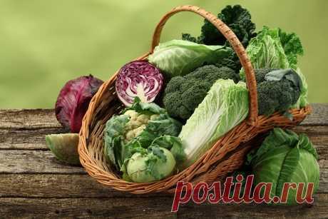 Капустная диета: 5 вкусных рецептов для похудения Понедельник — отличный повод сесть на диету, не откладывая на завтра. Предлагаем... Читай дальше на сайте. Жми подробнее ➡