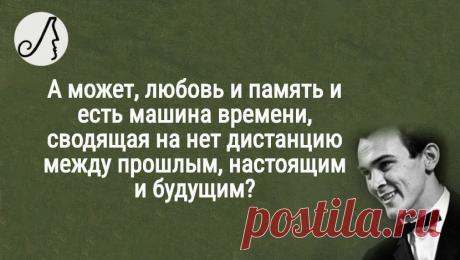 """""""Все плохое в жизни человека случается по его вине"""" цитаты Магомаева с которыми я не согласен   Личности   Яндекс Дзен"""