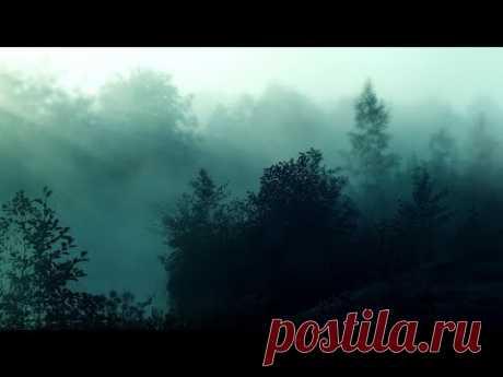 Музыука для ДУШИ ! Рашид Насибоглы - Порты - YouTube