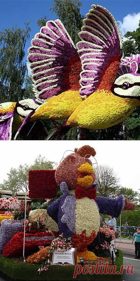 Aalsmeer Flower Parade: километры цветов и миллион живых растений