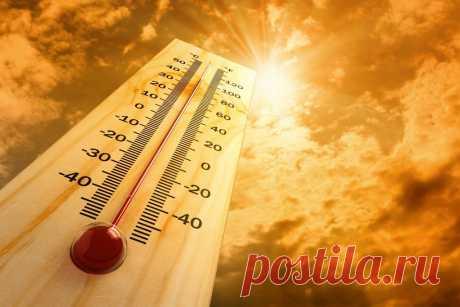 Как пережить жару (5 советов, проверенных временем) | Болтай
