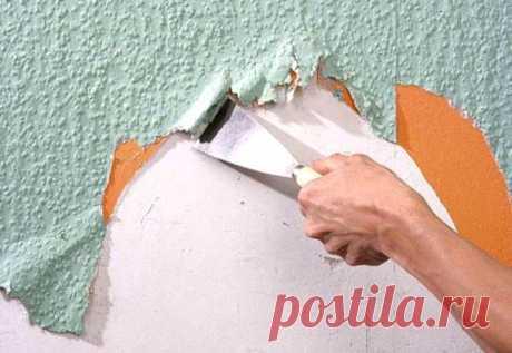 Как быстро снять жидкие обои со стены вручную — Строительство и отделка — полезные советы от специалистов