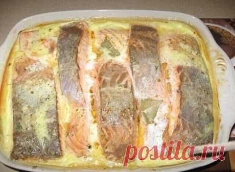 Рыба, запеченная в сметане 🤗Вы должны это попробовать!!! Я всегда думала что пробовала вкусную рыбку... но нет, этот вкус я долго не забуду 🤩  Ингредиенты:  2 кг рыбы (хек, минтай,судак и т.д.)  3 головки лука  2 яйца  150 г сыра твердых сортов  400 г сметаны  растительное масло  мука  маленький пучок укропа  специи, соль и горчица по вкусу
