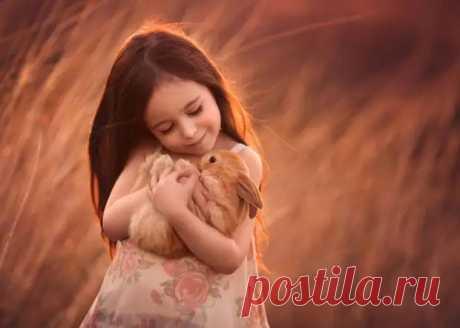 Маленькие ребятки и пушистые зверятки: волшебные фото Лизы Холлоуэй - Друг - медиаплатформа МирТесен