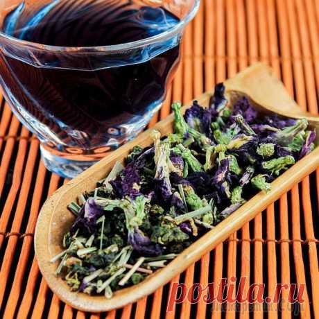 Великолепные виды чая, употребление которых равноценно занятиям в спортзале Чай является наиболее потребляемым напитком после воды и кофе. Этот ароматический напиток производится в основном с листьями «Camellia sinensis», что является своего рода чайным растением, родным для ...