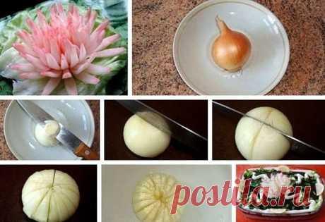 Хризантема из лука 1.Для приготовления хризантемы возьмите маленькую круглую луковичку. Можно взять как белую, так и красную луковицу. Чем меньше луковичка, тем красивее получается цветок. Старайтесь выбирать луковицу тонкостенную, тогда лепестки получаются тоньше и красивее раскрываются. 2.Почистите луковицу и срежьте верх и низ приблизительно по 0,5 см. 3. Тонким острым ножом аккуратно разрежьте почти пополам, не дорезая до конца около 0,5 см. Надрез делается с верхней с...
