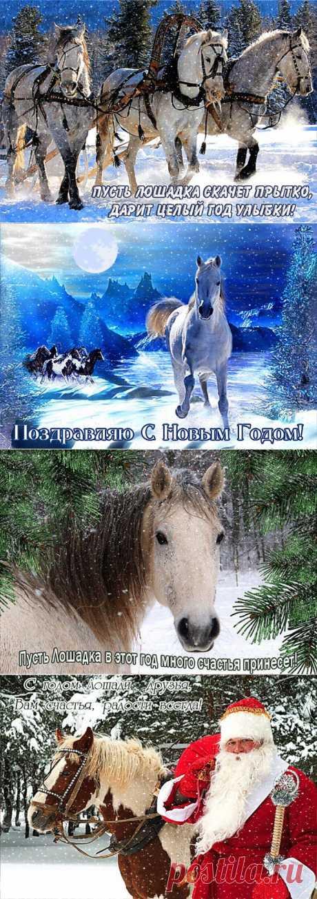 сообщение Логово_Белой_Волчицы : С наступающим Новым 2014 годом! (15:05 30-12-2013) [2734493/305462374] - icheremnykh@bk.ru - Почта Mail.Ru
