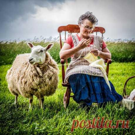Почему вязание делает нас счастливее: мнение ученых