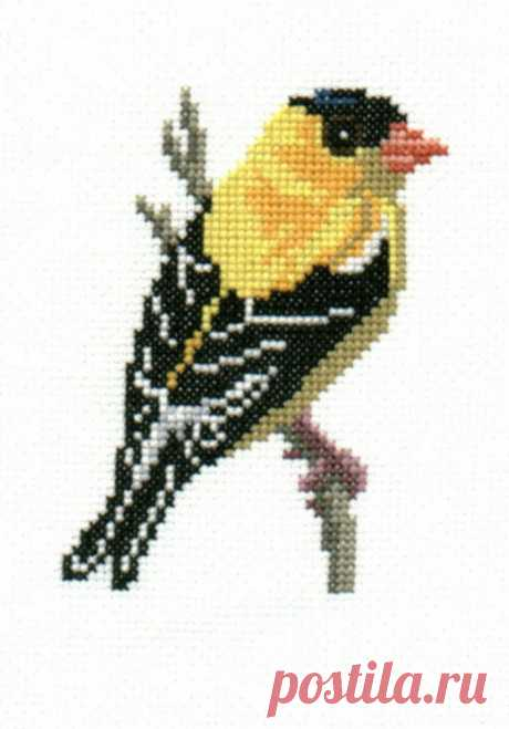 Goldfinch counted cross-stitch chart   Etsy