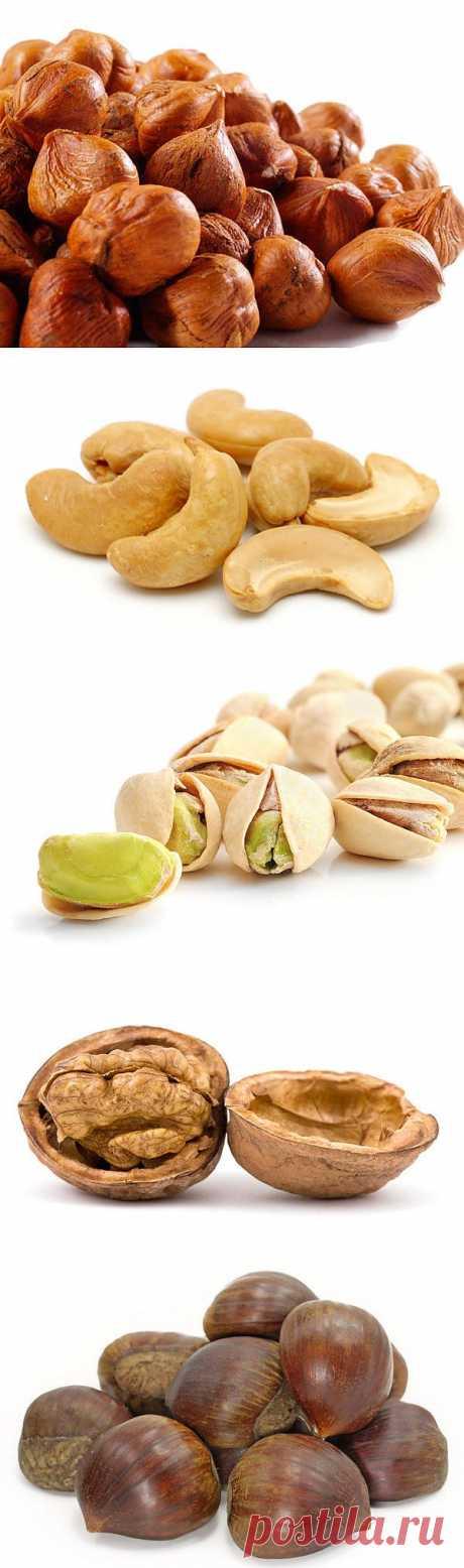 Полезные орехи и их свойства : НОВОСТИ В ФОТОГРАФИЯХ