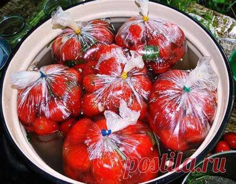 Рецепт помидоров засоленных в пакетах Советую взять на заметку рецепт помидоров засоленных в пакетах, уверена, этот рецепт станет для Вас коронным. Для рассола: на 1л холодной воды — 2 столовые ложки соли крупного...