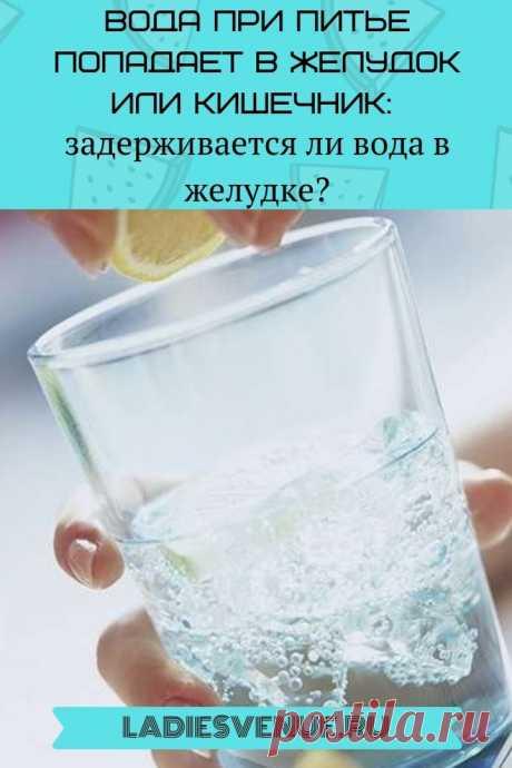 Вода при питье попадает в желудок или кишечник: задерживается ли вода в желудке - Ladiesvenue.ru Вода при питье попадает в желудок или кишечник: задерживается ли вода в желудке? Многие знают, что нужно выпивать не менее «8 стаканов в день», но если вы чувствуете себя обезвоженным, сколько времени действительно понадобится для того, чтобы вода из желудка попала в кишечник, а из него — в кровоток? Ответ сильно варьируется в зависимости от …