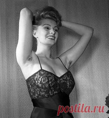 Обалденные фото Софи Лорен: 6 тыс изображений найдено в Яндекс.Картинках