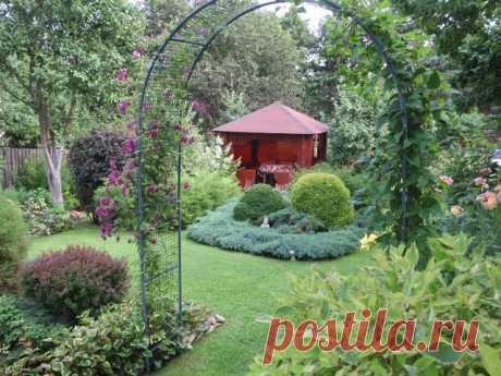 Идеи для вашего сада