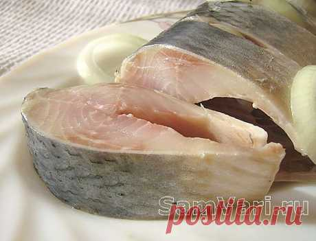 Herring in house conditions. The recipe of a marinated herring with a photo.