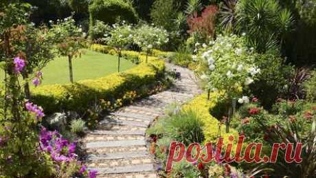 7 лучших советов для оформления сада (как с ландшафтным дизайнером) Избавиться от неровностей, засеять газон, отказаться от четких клумб — ориентируясь на эти рекомендации, у вас получится сделать красивый сад. Рассказали самое главное в коротком ролике. 1. Избавьтесь от неровностей и проведите коммуникации. Перед тем как выбирать цветы и кустарники для своего участка, изучите его рельеф, затемненные и светлые зоны, места с проблемным грунтом.