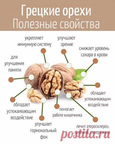 Почему полезно есть грецкие орехи — Полезные советы