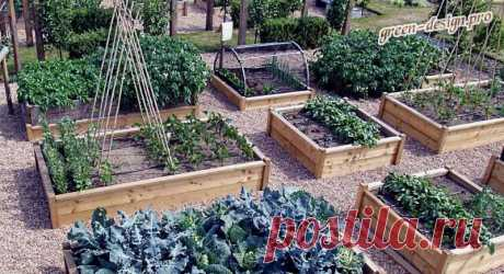 Высокие грядки – отличный способ выращивать цветочные и огородные культуры в местах совершенно непригодных для этого. Такие конструкции имеют эстетичный внешний вид, отличаются практичностью и удобством.