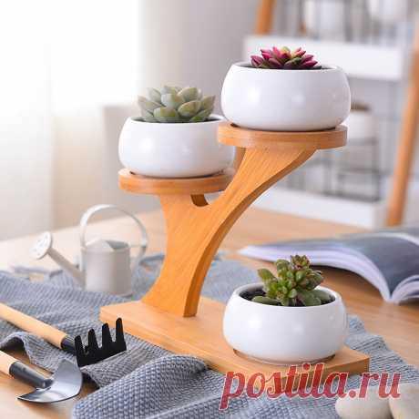 Мини-Кактус Сочные Горшки с 3 Ярусами Бамбуковые Блюдца Стенд Декоративный Керамический С Цветочным Горшком