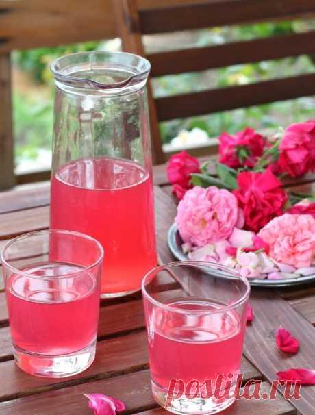 Лимонад из розы - БУДЕТ ВКУСНО! - медиаплатформа МирТесен